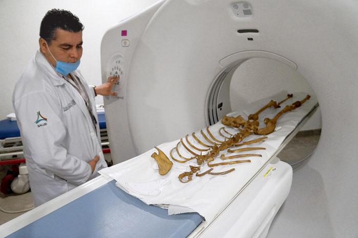 El INAH concluye la conservación de los restos de