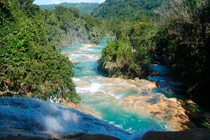 Reserva Montes Azules tiene la más alta diversidad biológica de América